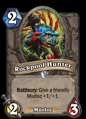 rockpool-hunter