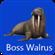 RagingAlphaWalrus's avatar