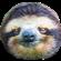 Buettel's avatar