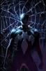 Spiderwilliam13's avatar