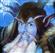 Wooker12's avatar