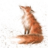 Ferrafox's avatar