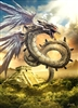 Amphidsf's avatar