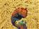 Pladmir's avatar
