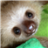 donard80's avatar