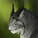 PblcbHS's avatar