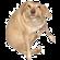 Stevercakes's avatar