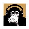 cwApe's avatar