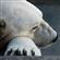 Strayer's avatar