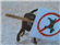 Wada's avatar