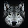 Feskas13's avatar