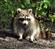 user_782343's avatar