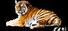 gill59's avatar