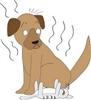 StinkyDog's avatar