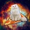 Pizzacats's avatar