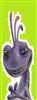 Kixy's avatar