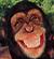 user-15472345's avatar